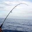 Συμβουλές για καλή ψαριά